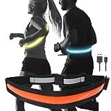 TERUI Lights Osaka ランニング ライト 充電式 led ベルト 反射板 腰 防水 usb ジョギング 自転車 ナイト タスキ 夜間 反射 バンド ウォーキング 反射材 光る サイクリング