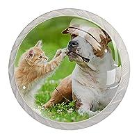 引き出しハンドルは丸いクリスタルガラスを引っ張る キャビネットノブキッチンキャビネットハンドル,小さな子猫と遊ぶテリア犬