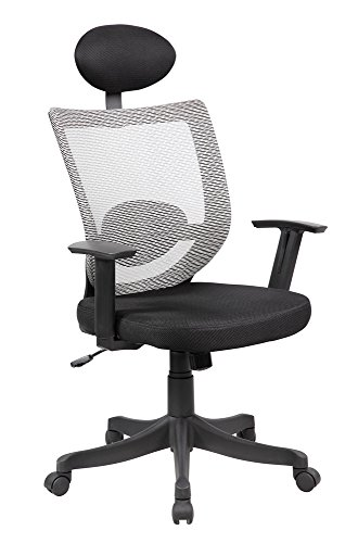 NORDIN Active Sitting Position and Beautifully Engineered Modern, Sleek Look with Ergonomics Breathable Mesh Back with Lumbar Support Ergonomic Design Thick Padded Contour Seat