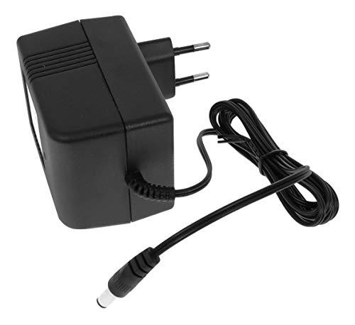 Robix Cargador para coche eléctrico infantil de 12 V con indicador de carga LED