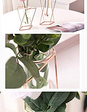 Aoderun Glass Flower Vase with Metal Stand Modern Geometry Desktop Glass Planter Indoor Hydroponics Plants for Home Office Ga