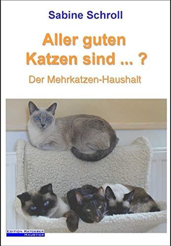 Aller guten Katzen sind ...?: Der Mehrkatzen-Haushalt
