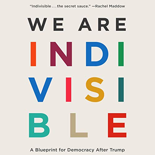 We Are Indivisible audiobook cover art