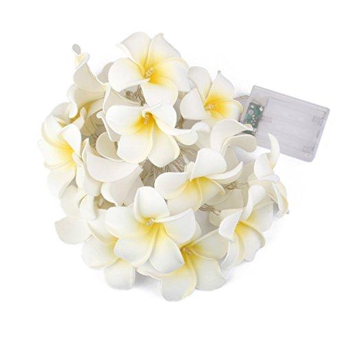 LEDMOMO Blume Lichterkette für Party Haus Dekoration