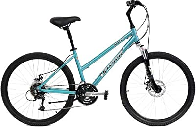 """Windsor Dover 3.0 21 Speed Comfort Bike Bicycle with Suspension Fork and Seatpost (Silver, 14"""" Ladies fits Most Riders 4' 9"""" to 5' 4"""")"""