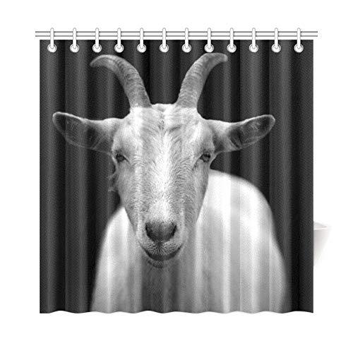 JOCHUAN Decoración para el hogar Cortina de baño Animal Blanco y Negro Primer Plano Tejido de poliéster Impermeable Cortina de Ducha para baño, 72 x 72 Pulgadas Cortinas de Ducha Ganchos incluidos