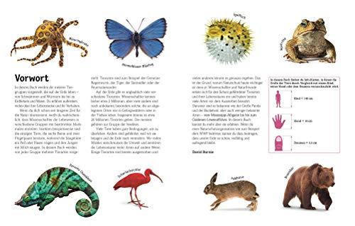 Tiere: Die Vielfalt der Tierwelt in 1.500 Bildern - 3