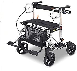 Mejor Shopping Trolleys For The Elderly de 2020 - Mejor valorados y revisados