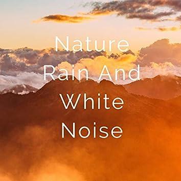 Nature Rain and White Noise