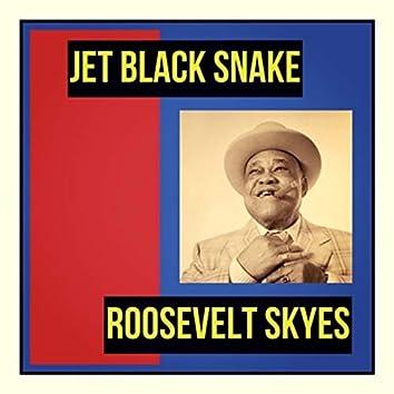 Jet Black Snake