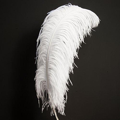 1 Plume d'autruche Blanc pour Décoration Fête Mariage - Longueur 60-70cm - Rosemarie Schulz