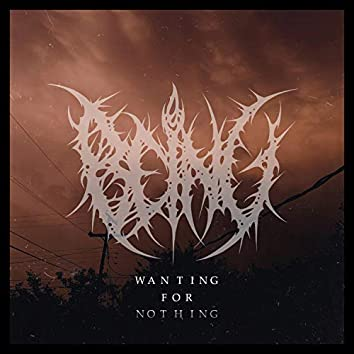 Wanting For Nothing
