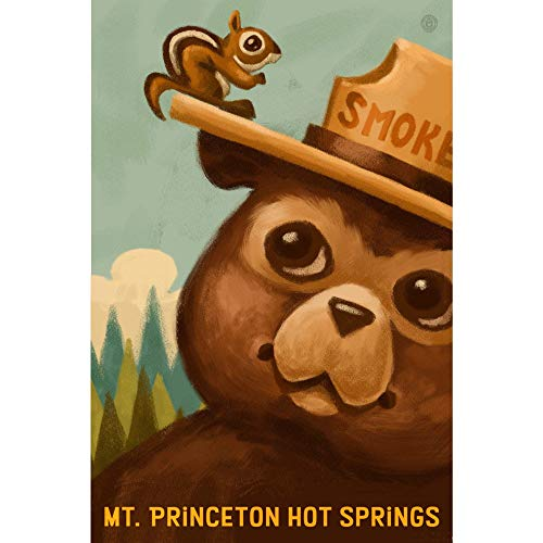 560 WENKLL Mt. Princeton Hot Springs Colorado Smokey Bear and Squirrel 8x12inch Pub Shed Bar Man Cave Home Bedroom Office Kitchen Gift Metal Sign