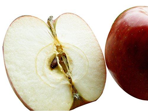 青森県産りんご A級品 ジョナゴールド 5kg(5キロ)