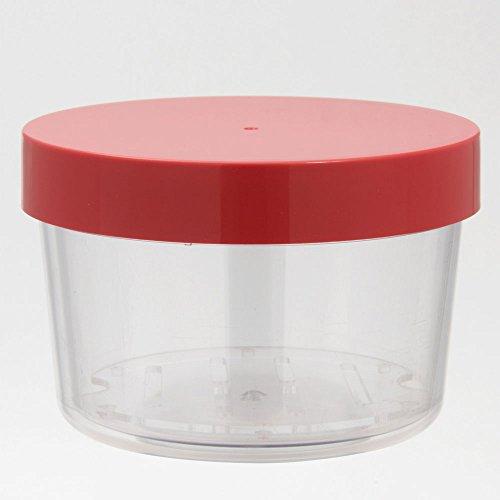 Japanese Gel-COOL Lunchbox kalt Agent integrierte runde Apfelrot 0101-0055