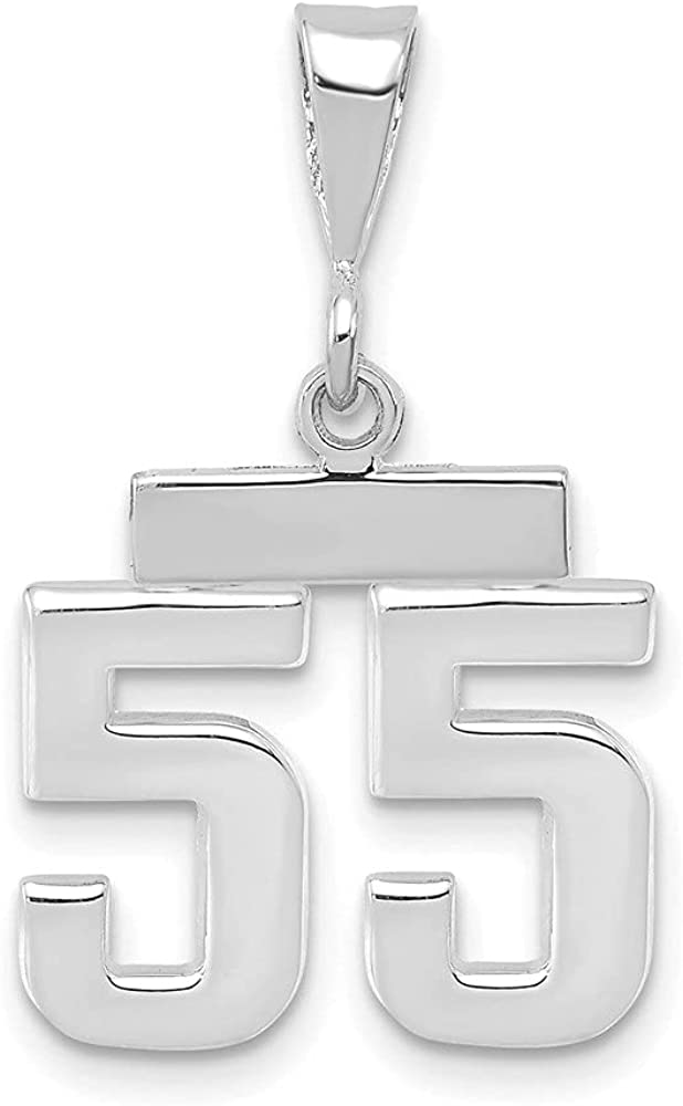 14k White Gold Small Number Pendant & Charm