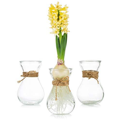 Glasseam Floreros De Vidrio para Flores con Cuerda De Cordel 3 Piezas/Juego Arreglos Florales, Floreros De Vidrio, Floreros De Cristal para Bodas, Hogar, Cocina, Decoración De Balcón De Jardín