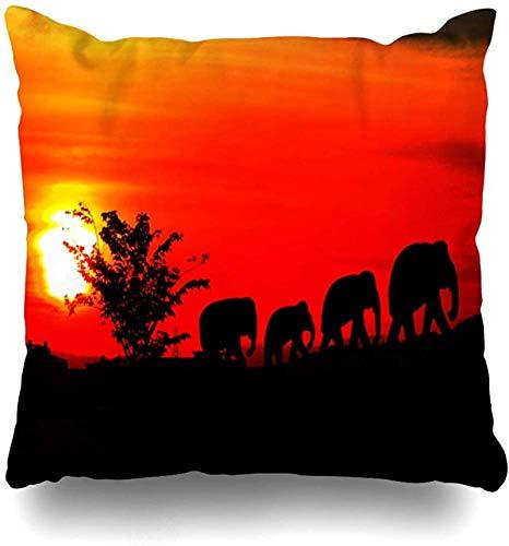 Throw Pillow Cover Funda de almohada Paquete naranja Elefante Familia Manada Africana Grande Cocoanut Bush Diseño de color de coco Funda de almohada para el hogar Funda de almohada cuad 16×16pulgada