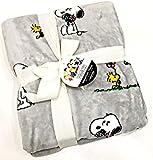 Peanuts Gang Snoopy & Woodstock Velvet Soft Polyester Plush Throw Blanket by Berkshire Blanket & Home Co. | 50' x 70'