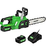 Best Cordless Chainsaws - AIPER 12 Inch 20V Cordless Chainsaw,4.0Ah Rechargeable Li-battery Review