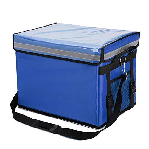 Productos para el Cuidado de la Piel Vegetales sanguiner 12V // 220VMini Frigor/ífico Doble Capa Refrigerador Port/átil Doble Uso Enfriador Congelador Tienda de Carnes cosm/éticos