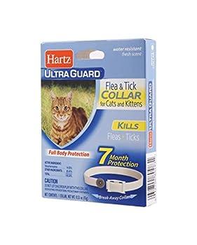 flea collar for kittens