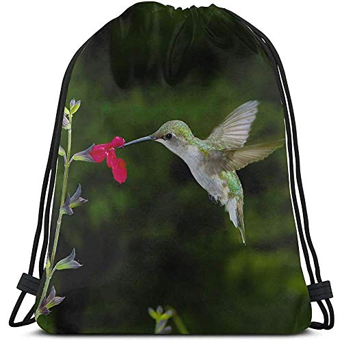 Yuanmeiju Sacca da palestra con coulisse,Draw Cord Bag,Female Ruby Throated Hummingbird Feeding At Red Sa Sport Favor Bags Youth Cinch Pack Gym-Sport-Bags For Gym,Travel,Outdoor