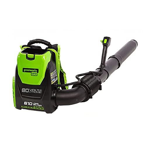 Greenworks Pro 80V (145 MPH / 580 CFM) Brushless...