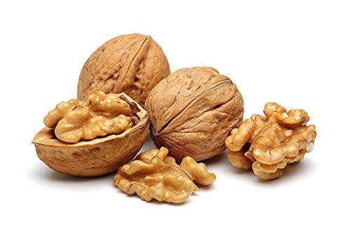 Creative Farmer Walnut Seeds - Juglans Regia -Walnut, Persian Walnut, European Walnut, Akhrot Herb Seeds Seeds - 1 Seeds for Growing Professional Pack : Amazon.in: Garden & Outdoors