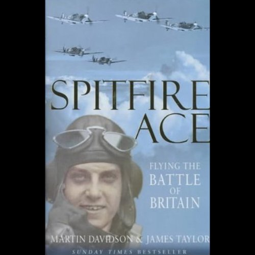 Spitfire Ace audiobook cover art