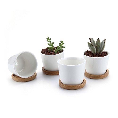 T4U 6.5CM Set of 4 Rotondo Sucuulent Erba Vaso con bambù Vassoio Ceramica Vaso di Fiori Pianta Succulente Cactus Vaso di Fiori Giardino i vasi di Fiori vasi di Piante.