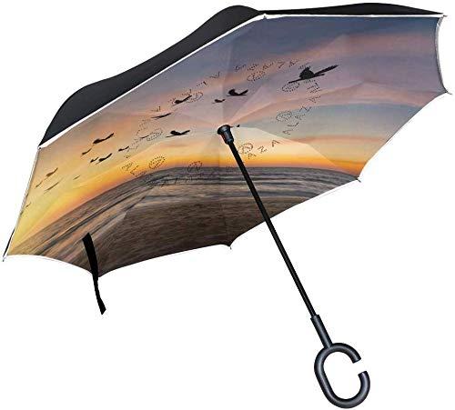 Sea Birds Scenery Umgekehrter Regenschirm Doppelschichtiger umgeklappter Regenschirm...
