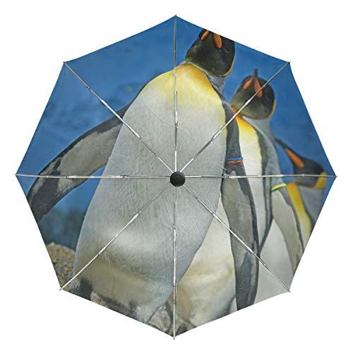 Lenenl 1703286 Reise-Regenschirm King-Penguin, Winddicht, automatischer Öffnung, leicht, kompakt, UV-Schutz