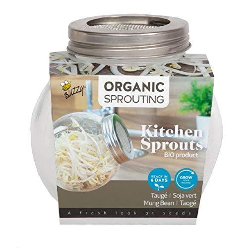 BIO Sprossen Anzuchtset - 1 Sprossenglas im Set mit Probepackung Spossensamen - 7,5g Mungbohne - Keimglas für Sprossen - Keimschalen für Sprossen - Sprouting