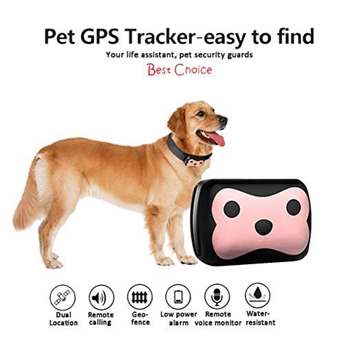 OMZBM Imperméable À l'eau Mini Pet GSM GPS Tracker Locator Collier Chien Chat Longue Veille Geo-Fence lbs Gratuit APP Plate-Forme Activité Moniteur Périphérique