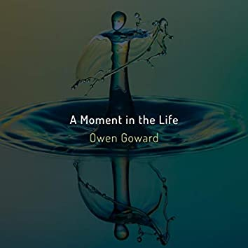 A Moment in the Life