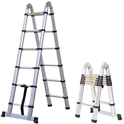Telescopic Multipurpose Ladder