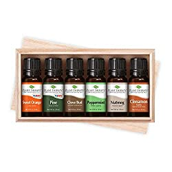 holiday spices essential oils gift set