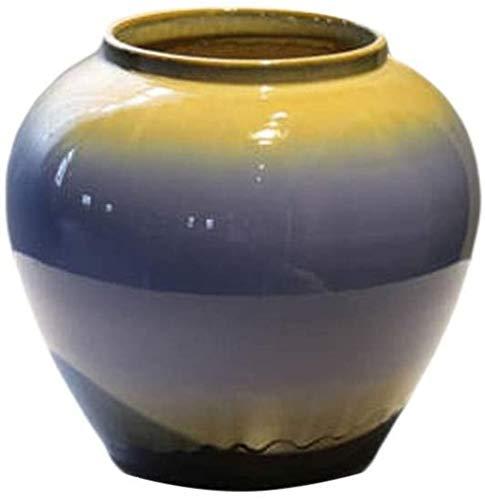 Vases Artesanía de cerámica hecha a mano se puede rellenar con plantas de cultivo de agua, se puede colocar en la decoración de mesa de armario de TV (26 x 26 cm) accesorios para el hogar
