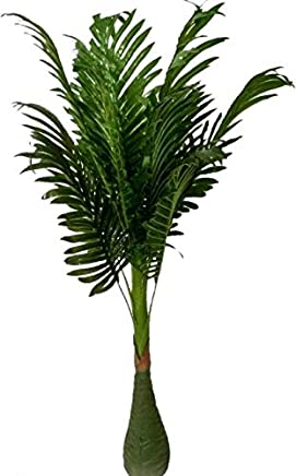 BK Mart Artificial Palm Tree with Natural Looking Plant Home Decor Office Decor - 100 cm Big Artificial Plant with Pot (100 cm, Green)