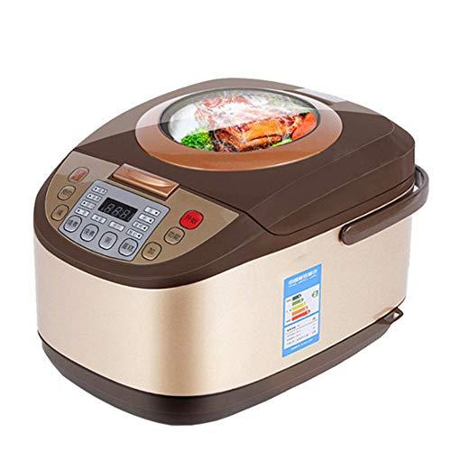 DIOI elektrische rijstkoker, 5 l timing reservering, levensmiddelen, verwarming druk, stoomper, voor 2-8 personen soepppan, taart 24 uur