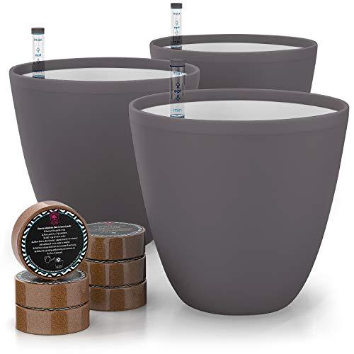 Gardenix Decor 7'' Self Watering planters for Indoor Plants