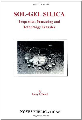 Sol-Gel Silica: Properties, Processing and Technology Transfer (English Edition)
