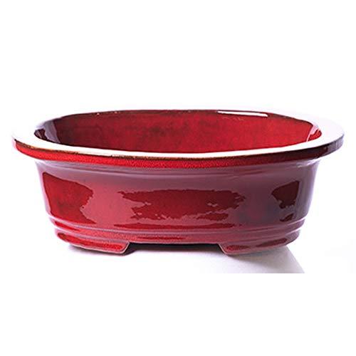 Alfareros Damian Canovas Maceta para Bonsai DE Barro Y ESMALTADA EN Color Rojo. Medidas 25X20X7CM.Modelos Osaka.con TU Compra TE REGALAMOS EL Plato.