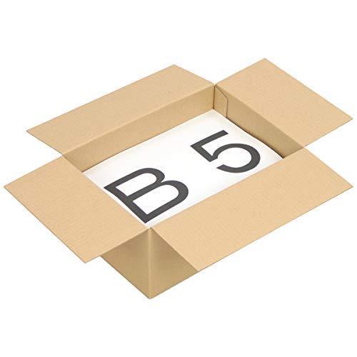 アースダンボール ダンボール 段ボール 60サイズ B5 宅配 発送 100枚 【267×187×119mm】【5166】