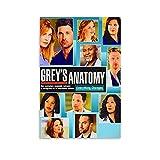 FGWS Greys Anatomy 9 Temporada US TV-Serie Poster