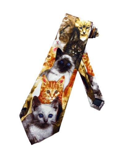 Steven Harris Kitty Cat Kittens Cats Collage Necktie - White - One Size Necktie