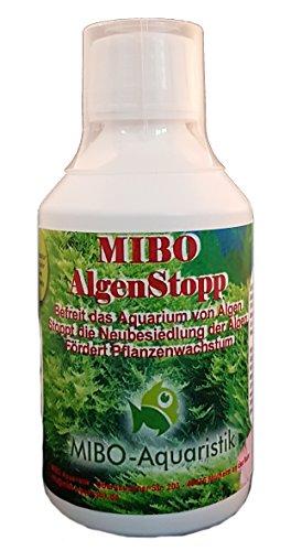 MIBO Algenstopp Algenvernichter 250 ml Flasche ausreichend für 2.500 l Neue Rezeptur ohne Kupfer größere Reichweite!!