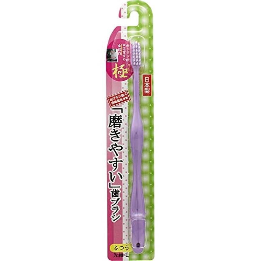 祖先候補者解くライフレンジ 磨きやすい歯ブラシ 極 LT-24 ふつう 1本