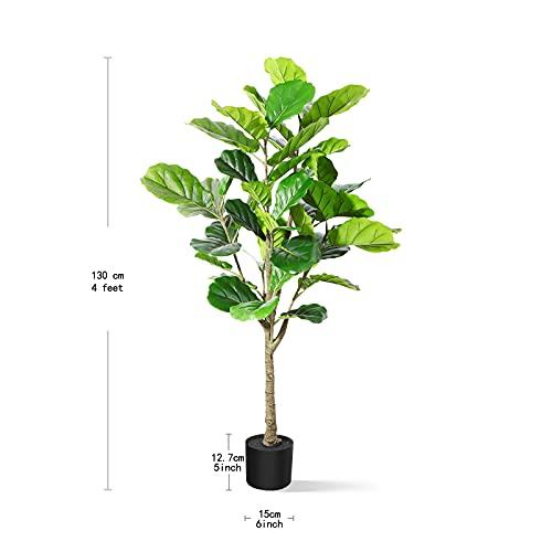 DR.Planzen Plantas